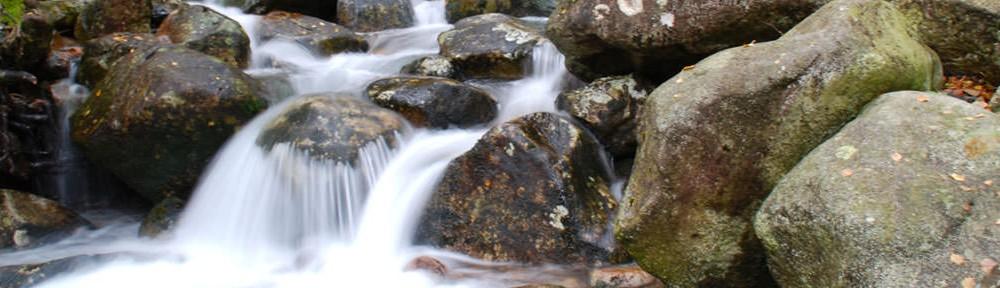 Praxis Reitinger Psychotherapie Wasser